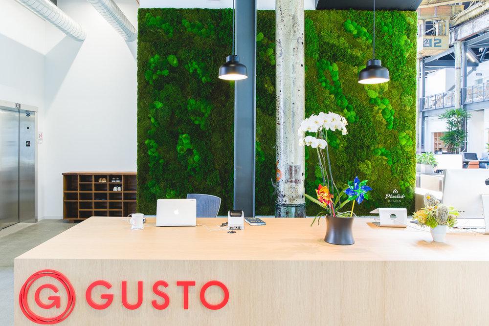 Gusto  - Moss Wall