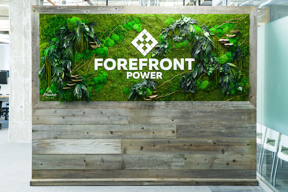 ForeFront Power  - Moss Wall