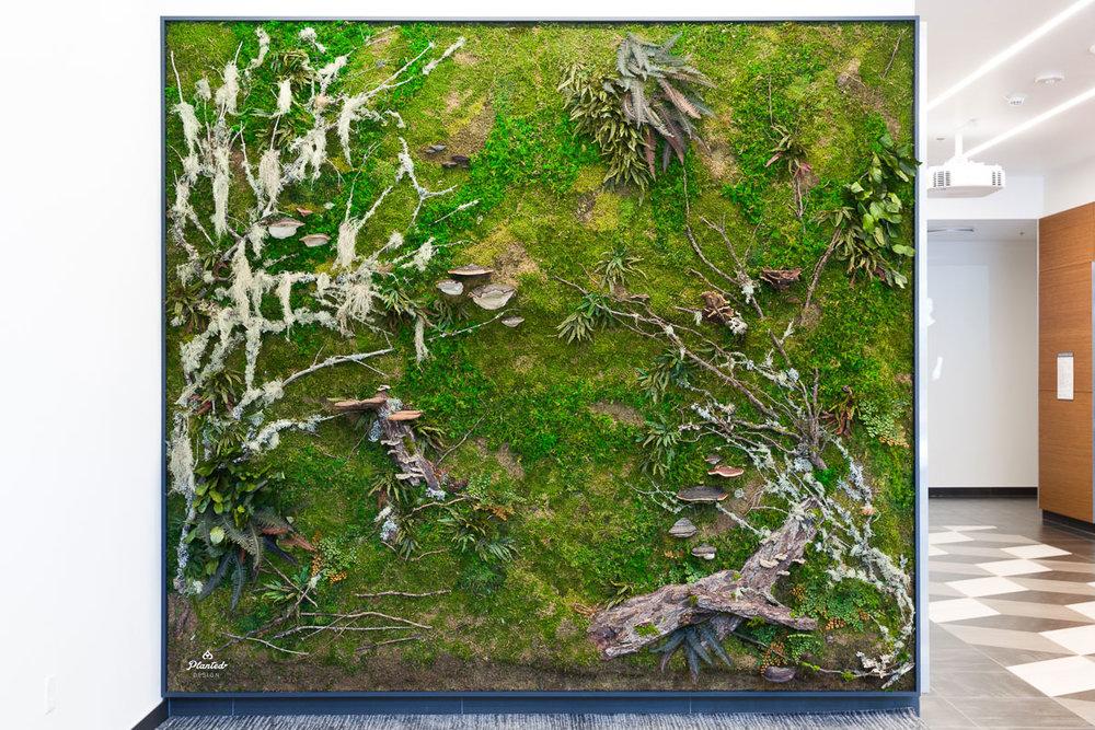 Aduro Biotech  - Moss Wall
