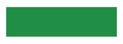 Rainforest-Logo.png