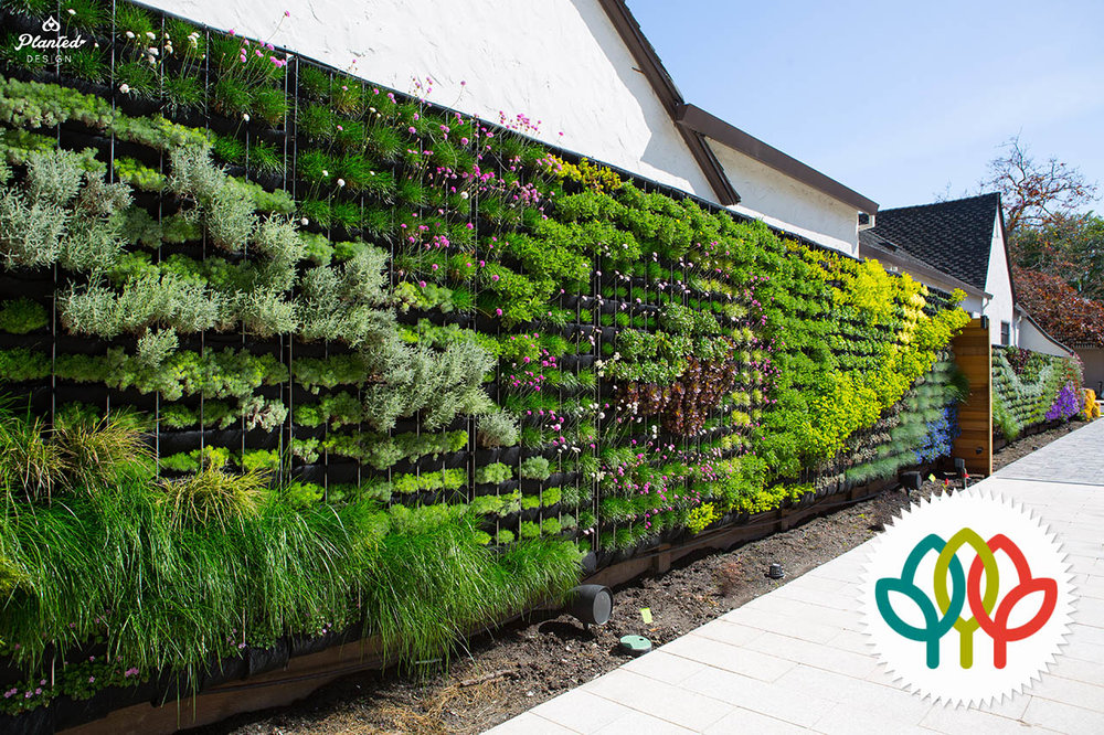 Residential  - Living Wall / Fence