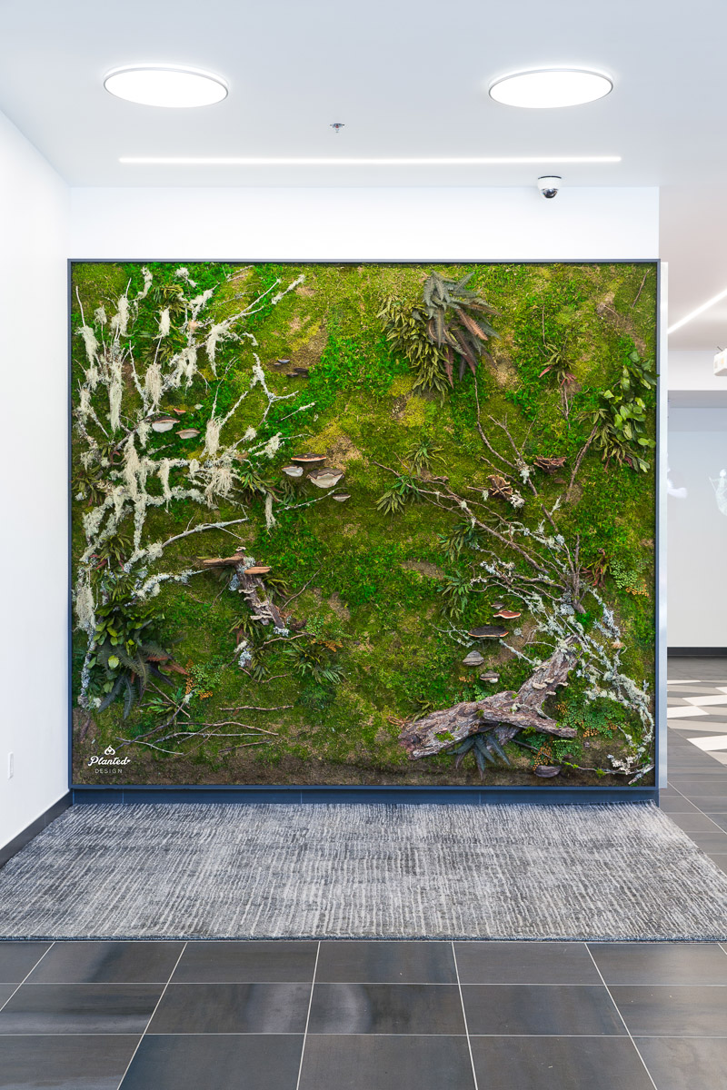 PlantedDesign_MossWall_AduroBiotech_Emeryville_Reception_Lobby_WoodBark_Mushrooms_Ferns_SpanishMoss_Branches_Riverbank_3671.jpg