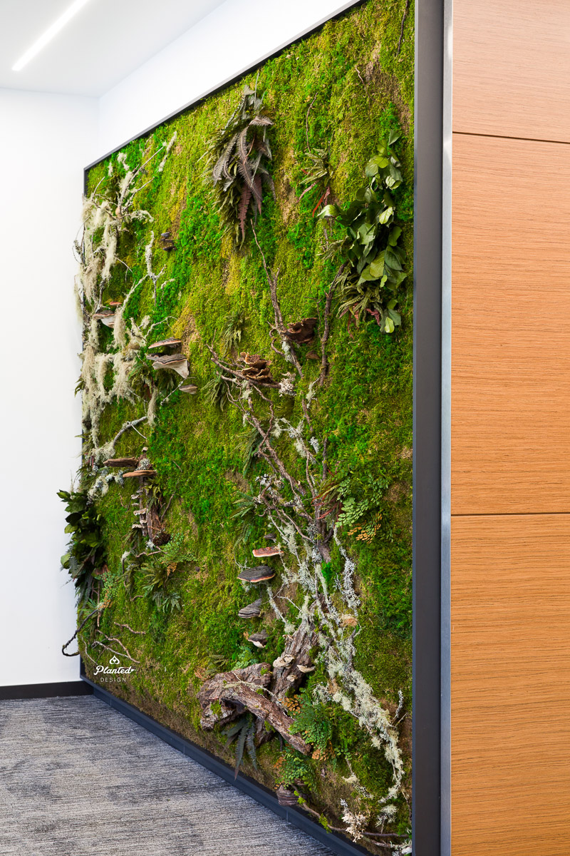 PlantedDesign_MossWall_AduroBiotech_Emeryville_Reception_Lobby_WoodBark_Mushrooms_Ferns_SpanishMoss_Branches_Riverbank_3732.jpg