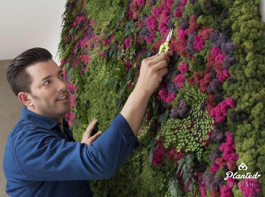 HGTV's Jonathan Scott Eco-Chic Planted Design