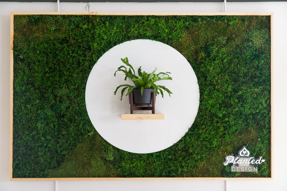 PlantedDesign_MossWall_LeonandGeorge_SanFrancisco_Showroom_Shelf_4951.jpg