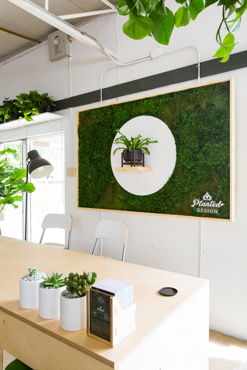 PlantedDesign_MossWall_LeonandGeorge_SanFrancisco_Showroom_Shelf_5076.jpg