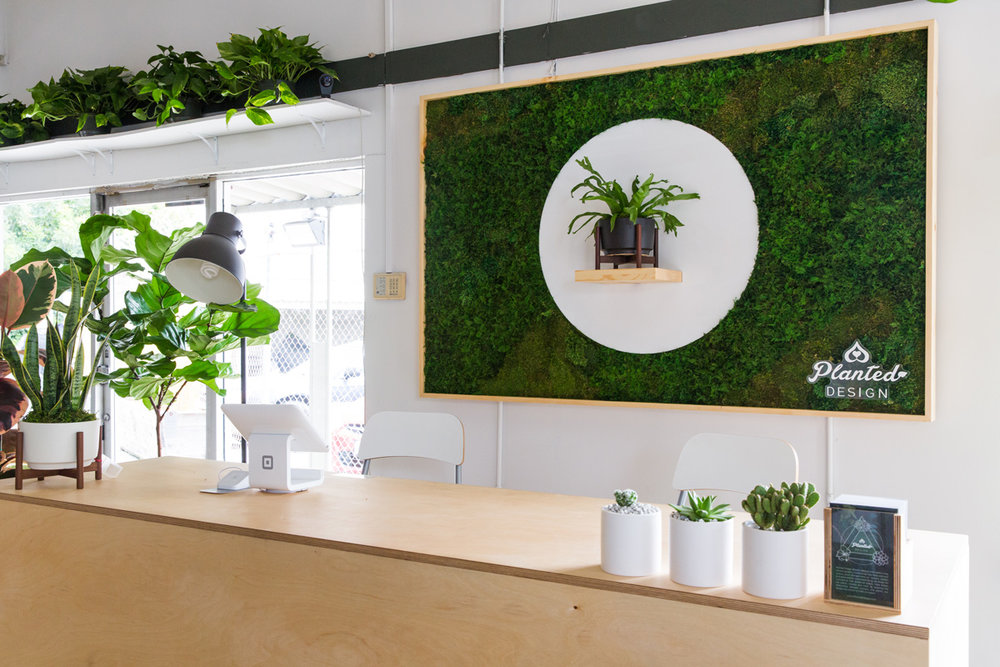 PlantedDesign_MossWall_LeonandGeorge_SanFrancisco_Showroom_Shelf_4981.jpg