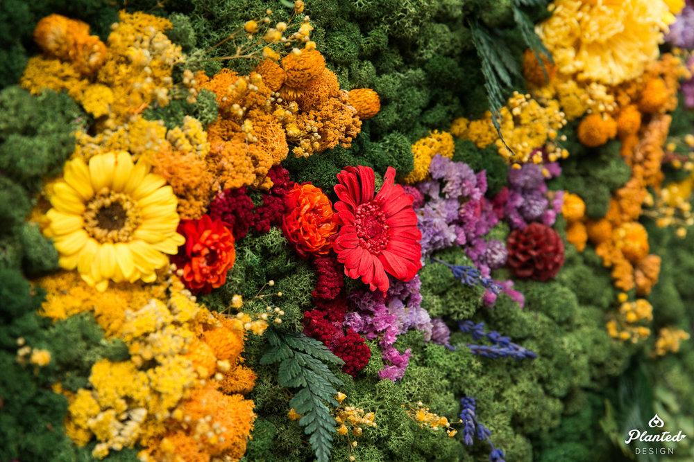 PlantedDesign_MossWall_Residential_Preserved_Flowers_5264.jpg