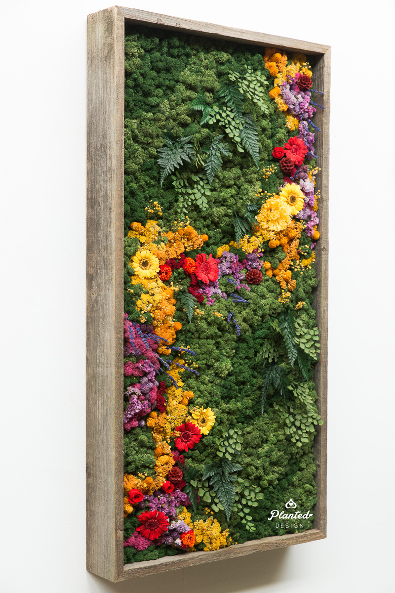 PlantedDesign_MossWall_Residential_Preserved_Flowers_5231.jpg