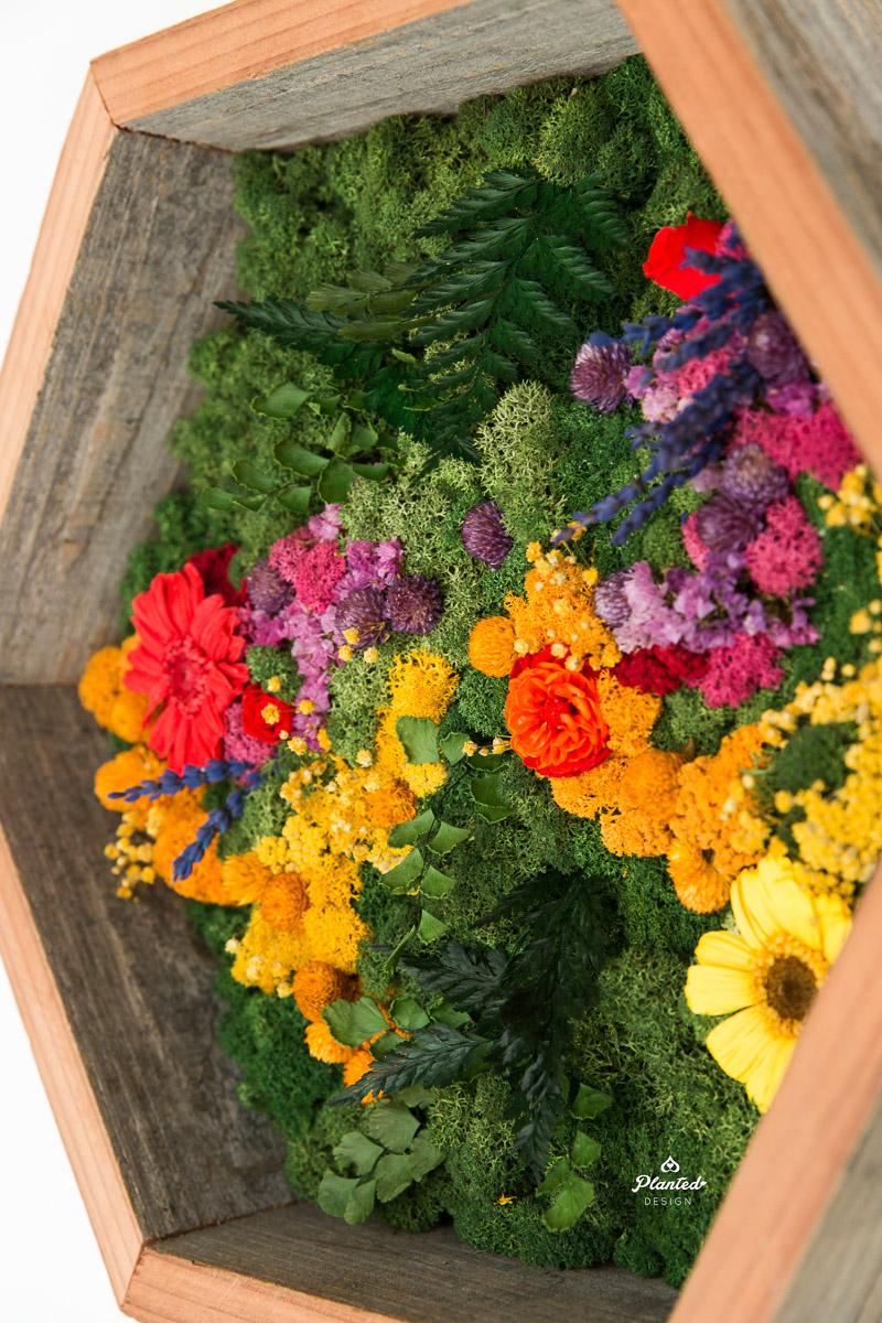 PlantedDesign_MossWall_Residential_Preserved_Flowers_5278.jpg