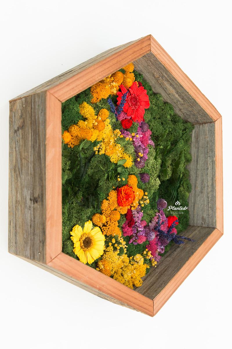 PlantedDesign_MossWall_Residential_Preserved_Flowers_5275.jpg