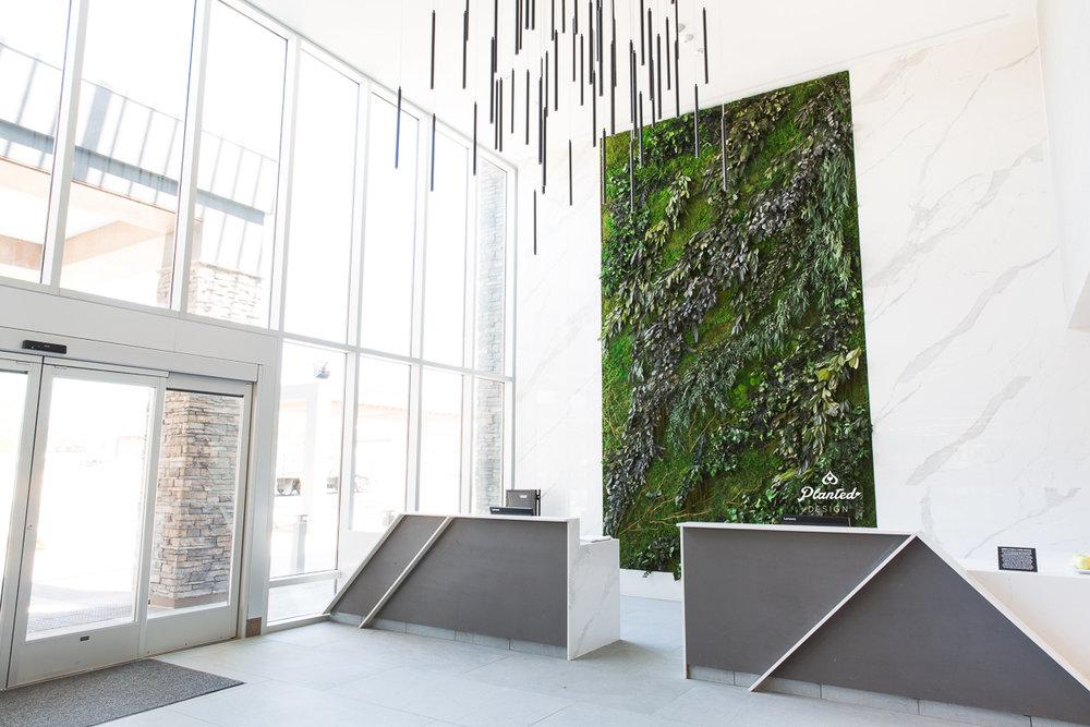 Hotel Trio  — Moss Wall