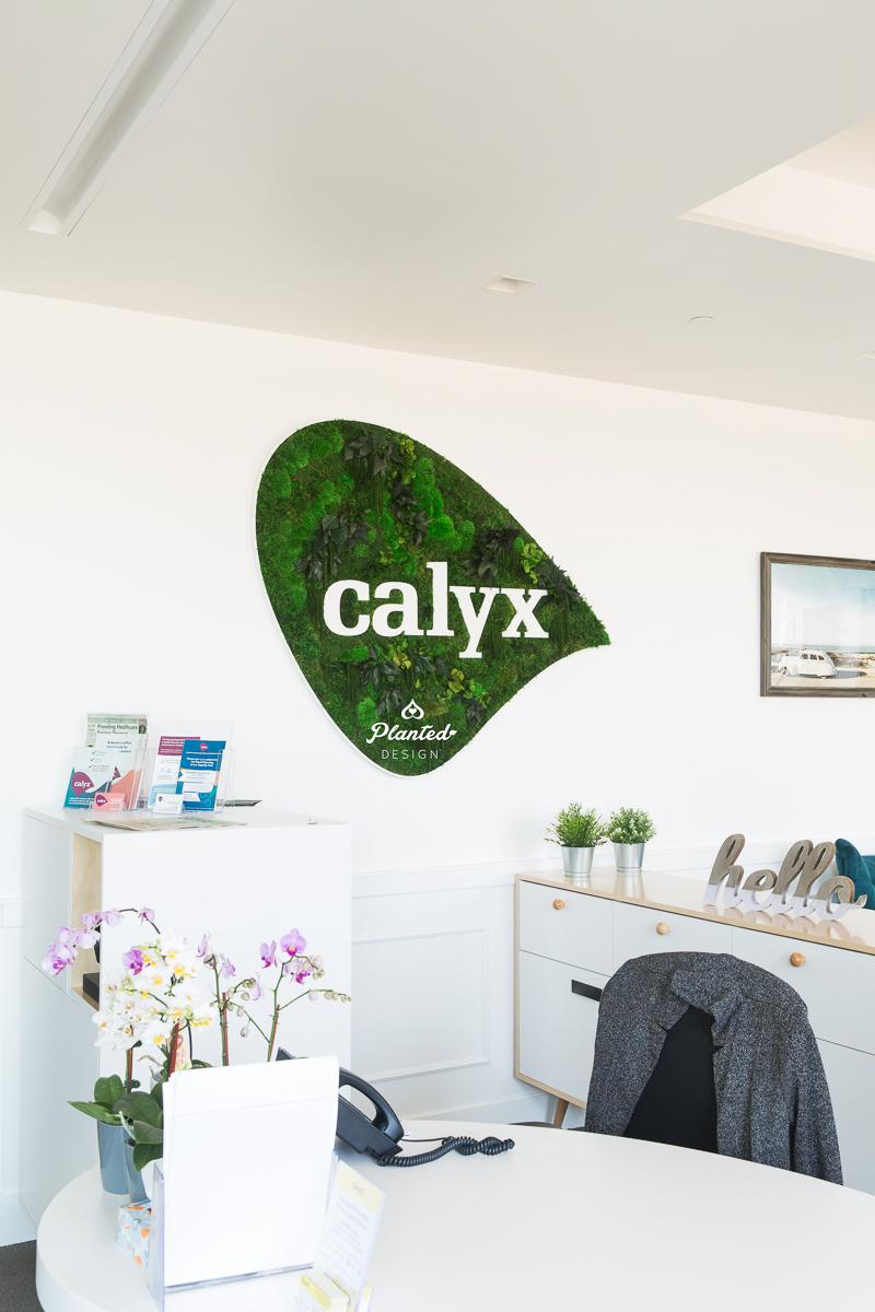 PlantedDesign_MossWall_Calyx_Reception_Alameda_California_6443.jpg