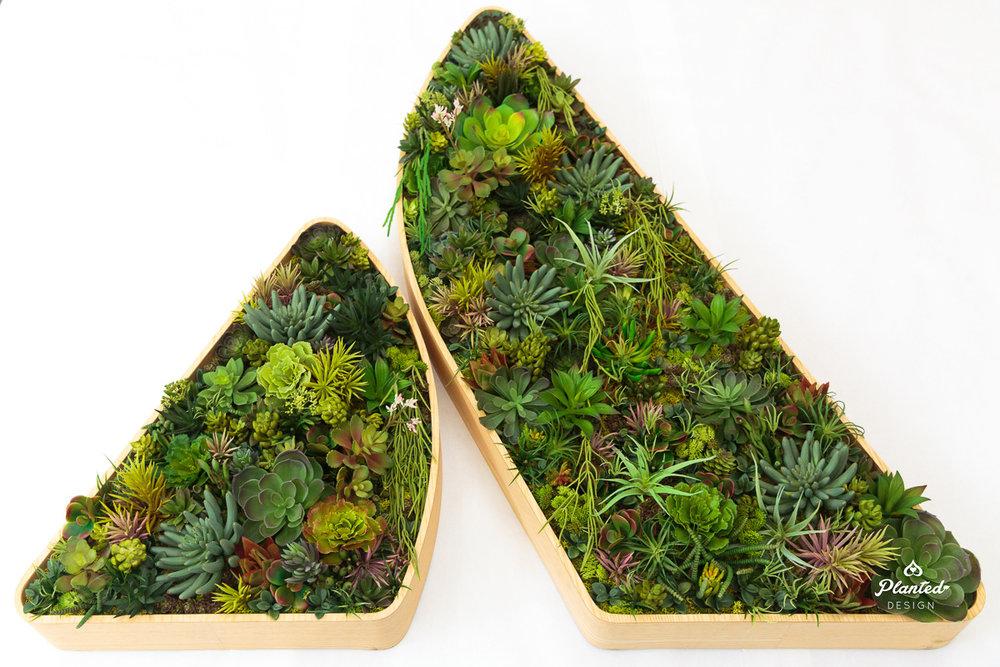 PlantedDesign_Succulent_Atlassian_SanFrancisco_California_Logo_8297.jpg