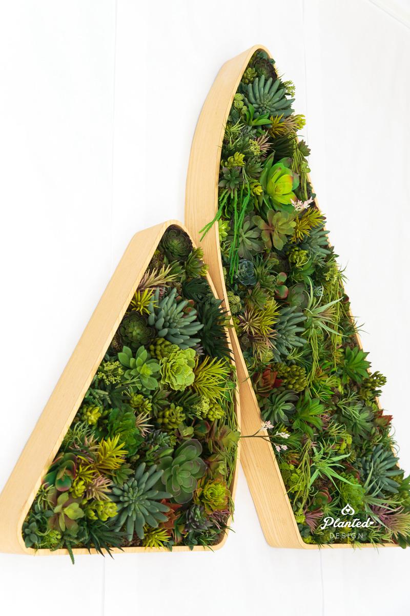 PlantedDesign_Succulent_Atlassian_SanFrancisco_California_Logo_8295.jpg