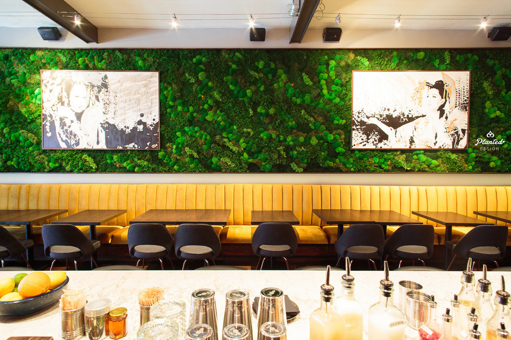 PlantedDesign_MossWall_Kaiyo_SanFrancisco_California_Restaurant_8216.jpg