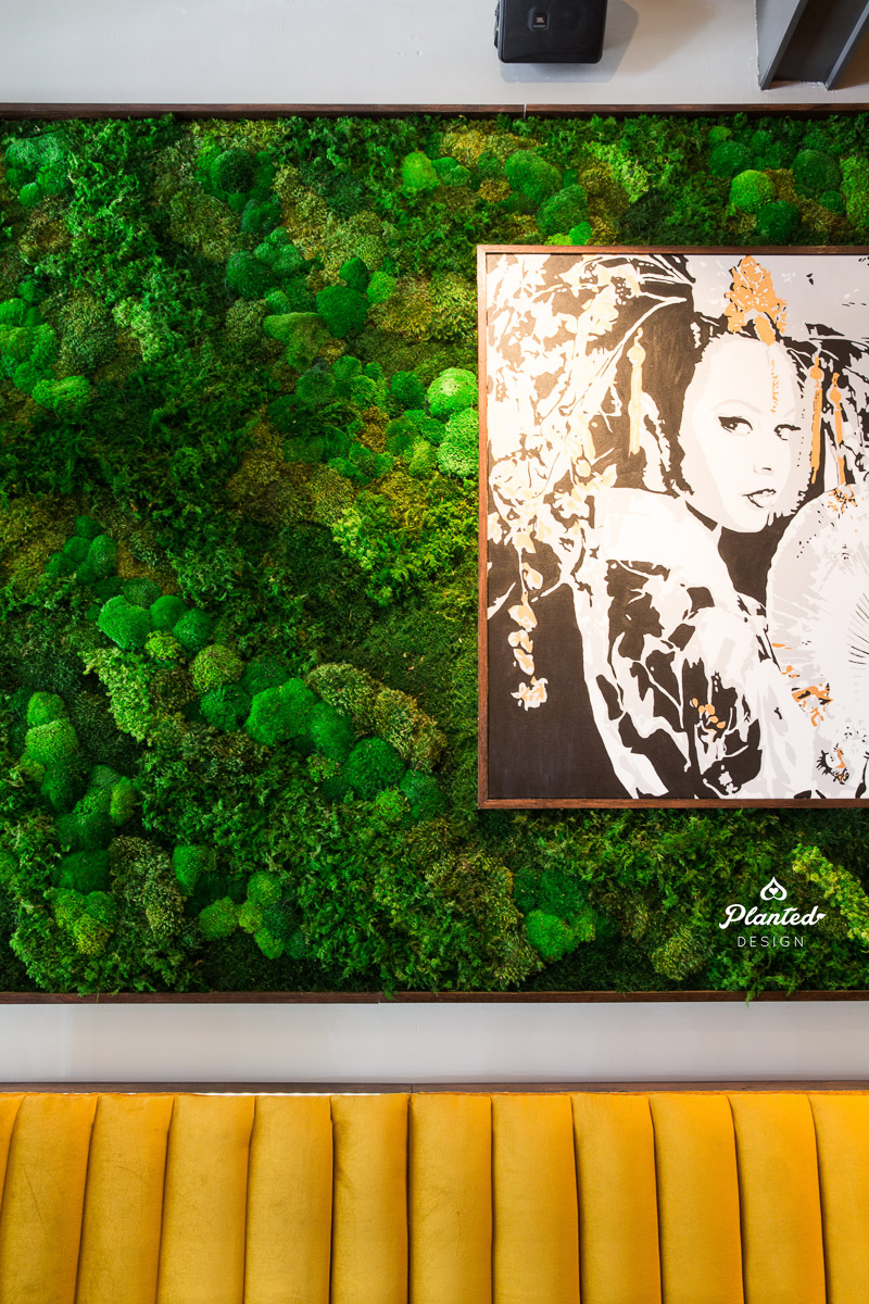 PlantedDesign_MossWall_Kaiyo_SanFrancisco_California_Restaurant_8248.jpg