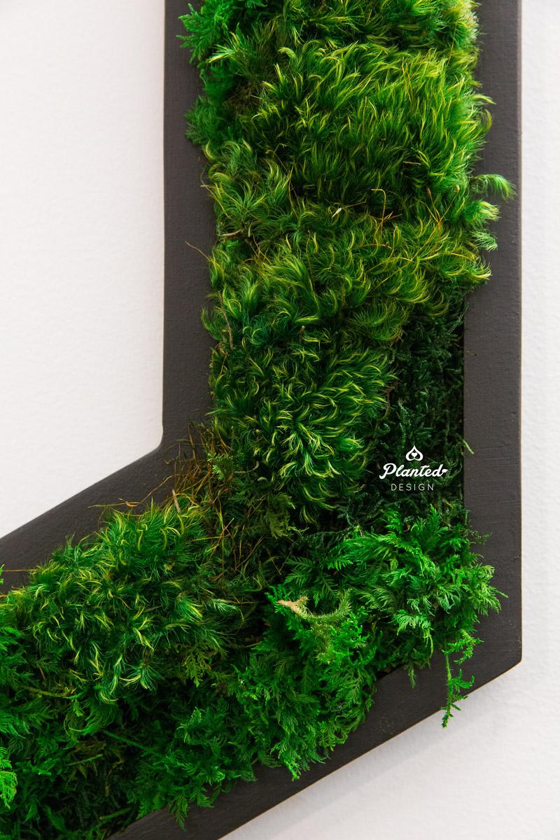 PlantedDesign_MossWall_Heap_SanFrancisco_California_8136.jpg