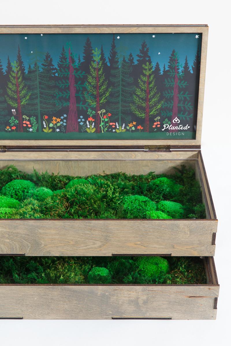 PlantedDesign_DisplayBox_HumboldtFarms_California_8668.jpg
