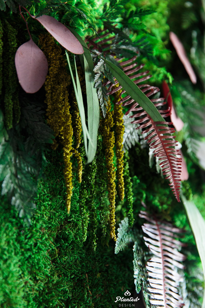 PlantedDesign_Dai_Ichi_Life_Innovation_Lab_MossWall_Sunnyvale_California_Office_8585.jpg