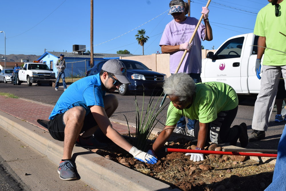 People United Fight Back - Shrub Beautification Project
