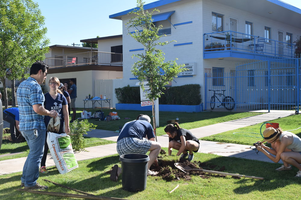 Urban Phoenix Project - Tree Planting Project