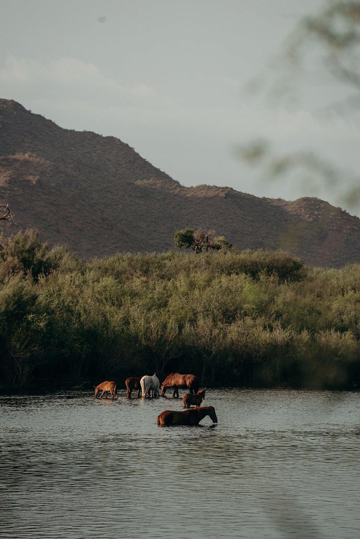 Desert-Storm-Adventure-MJPHOTO-8.jpg