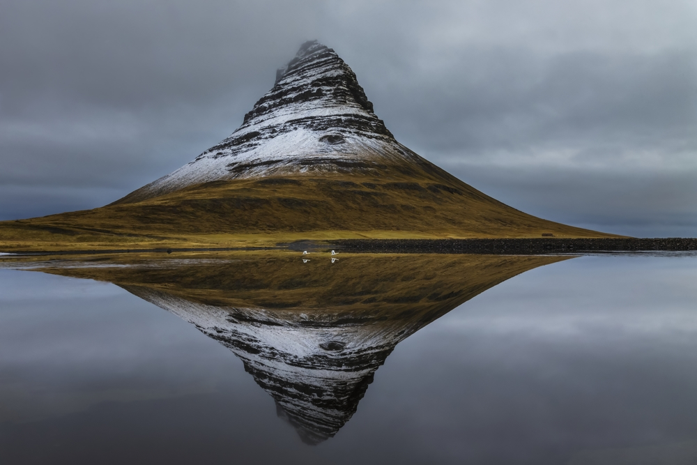 Earth Is My Witness : Kirkjufell and Whooper swans, Vesturland, Iceland