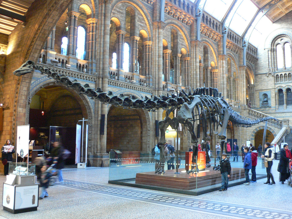 Entrance Hall at the National History Museum