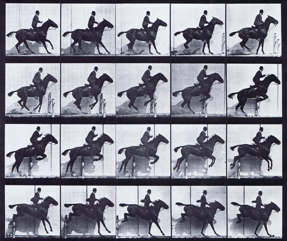 ' Horse in Motion ', 1878 by Cadweard Muybridge