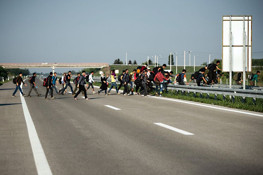 A group of refugees crossing a highway in Serbia near the town of Horgos.  Photo by Andrej Isakovic/AFP/Getty Images.