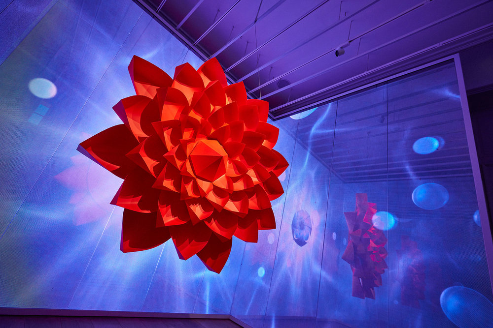 Installation view of Zoe Bradley's Neon Garden exhibition at Galeria Melissa.