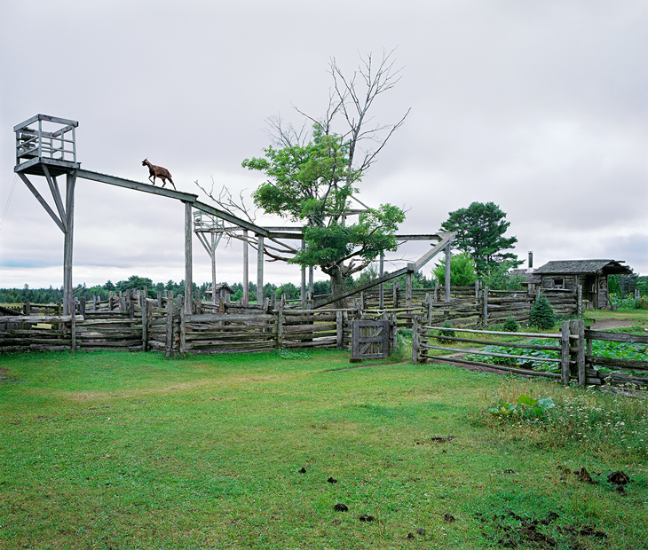 Mockin'bird Hill , 2004 by Thomas Bangsted.