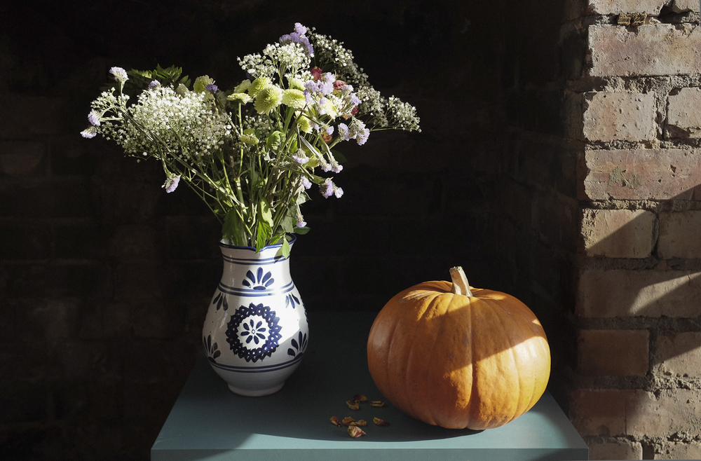 Flowers and Pumpkin, October 2014