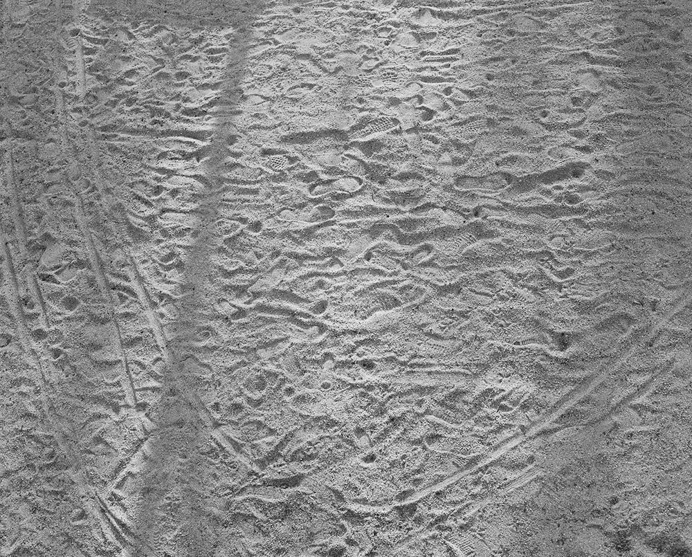 Footprints, 2016