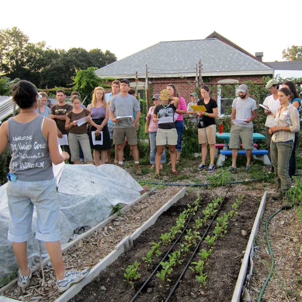 poughkeepsie farm project Vassar college leases 12 acres of former college farmland to a pioneering food nonprofit called the poughkeepsie farm project, a community farm with a commitment to education and food justice.