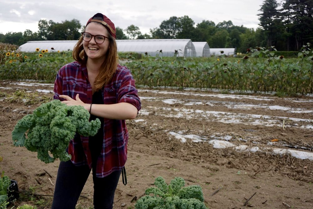 Photo credit: Eilif Ronning, PFP Media Intern A volunteer holds a freshly picked bunch of kale.