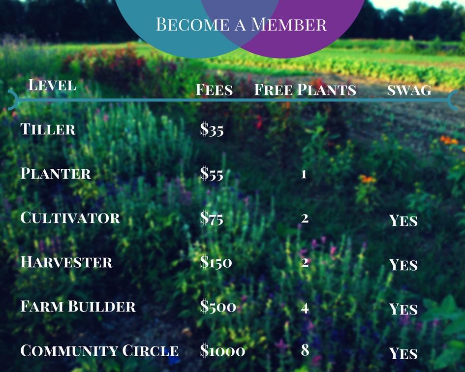 Become a Member Final (1).jpg