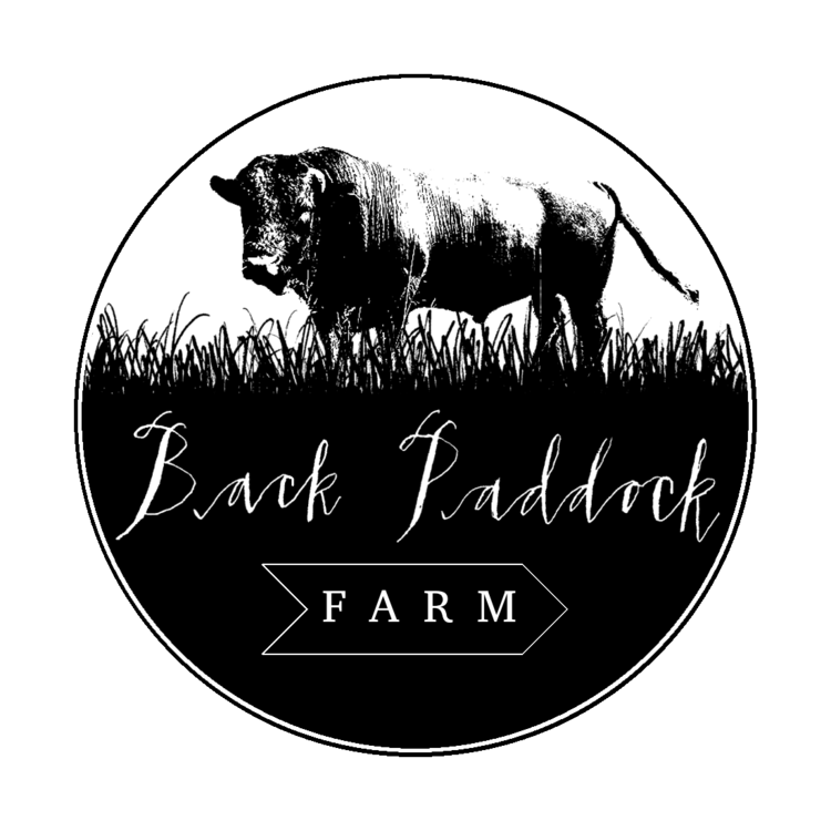 back paddock logo.png