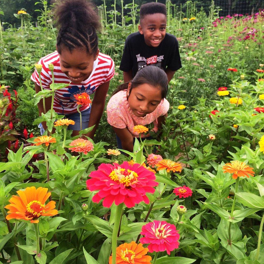 kids in flowers.JPG