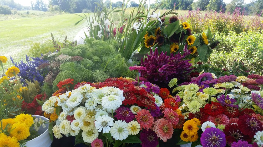 Beautiful flowers deserve beautiful arrangements   Learn how with Angela Defelice!   Learn More and Register