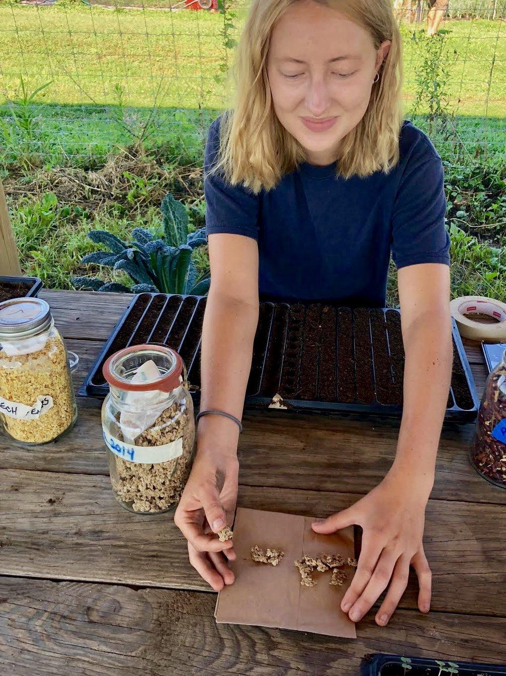 seed saving 2.jpg