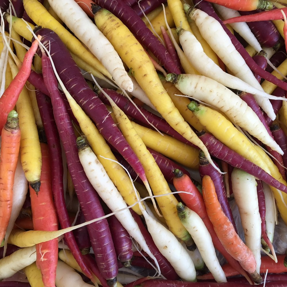 NEW rainbow carrot mix