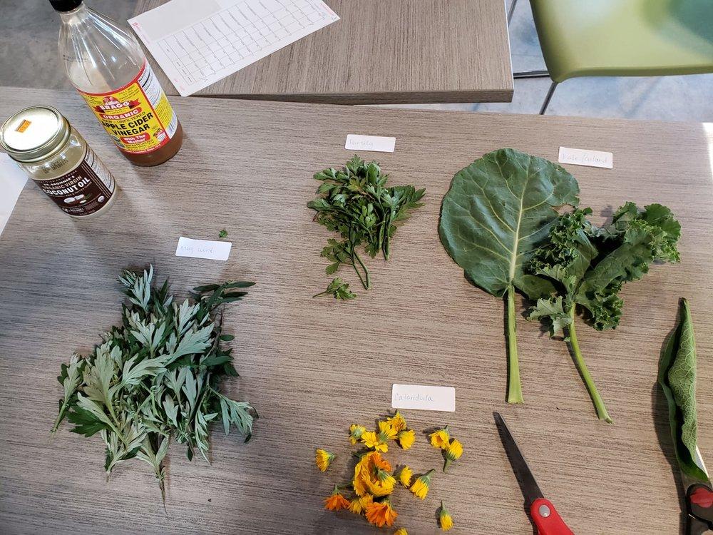 herbs 14.jpg