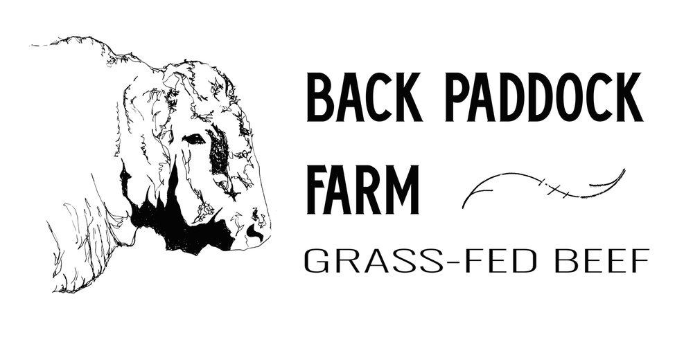 Logo_BPF.jpg