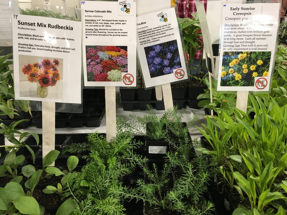 Farm Fest and Plant Sale    Come celebrate our 20th year!    Learn More