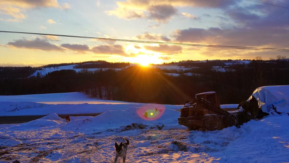 Snowy Sunset.jpg