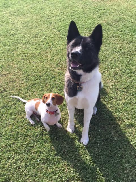 Milo & Lily pic.jpg