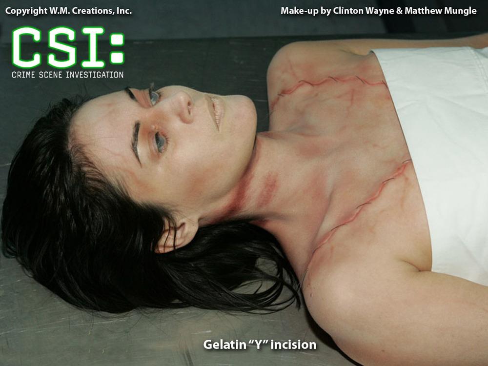 csi13.jpg