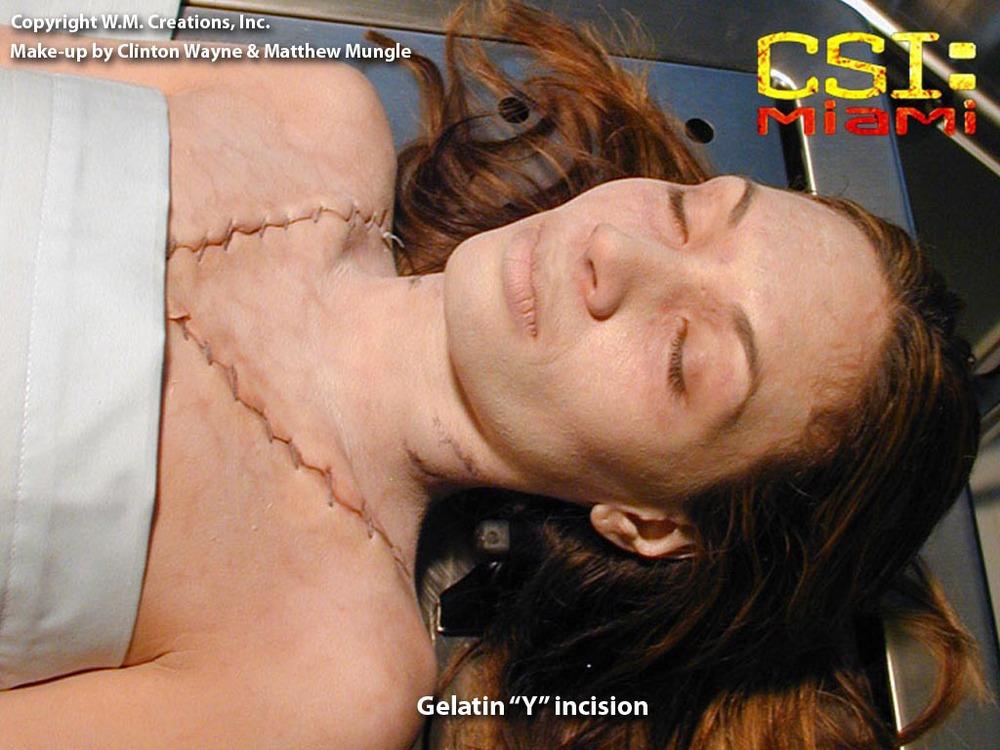 csim02.jpg